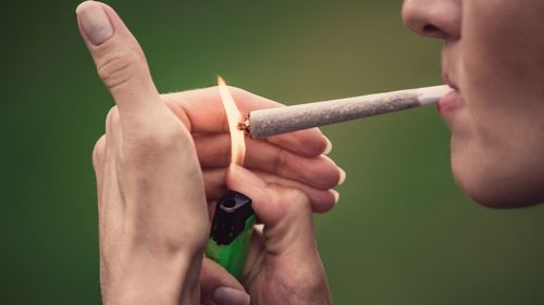 Image for Toxins in marijuana smoke may be harmful to health, study finds