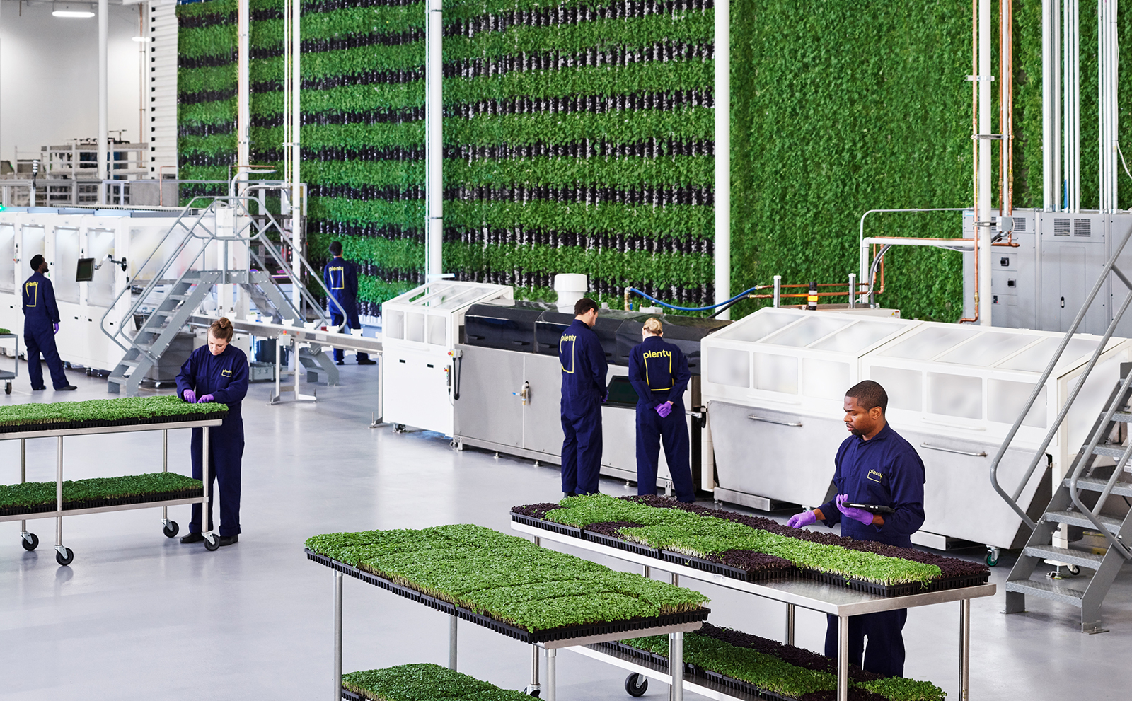 A giant, indoor vertical farm aims to bring jobs and fresh produce to Compton