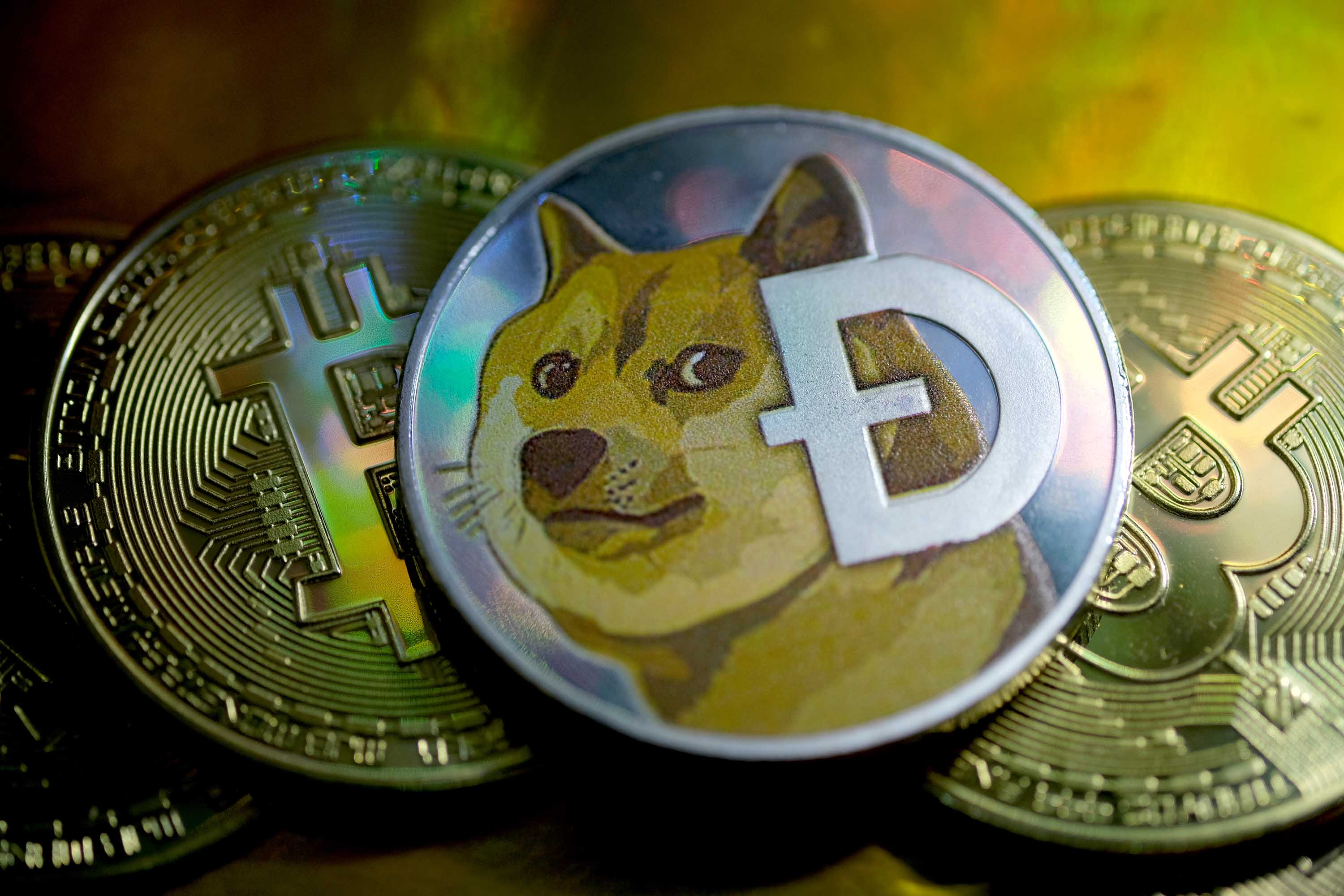 Dogecoin jumps 20% as crypto fans declare Doge Day