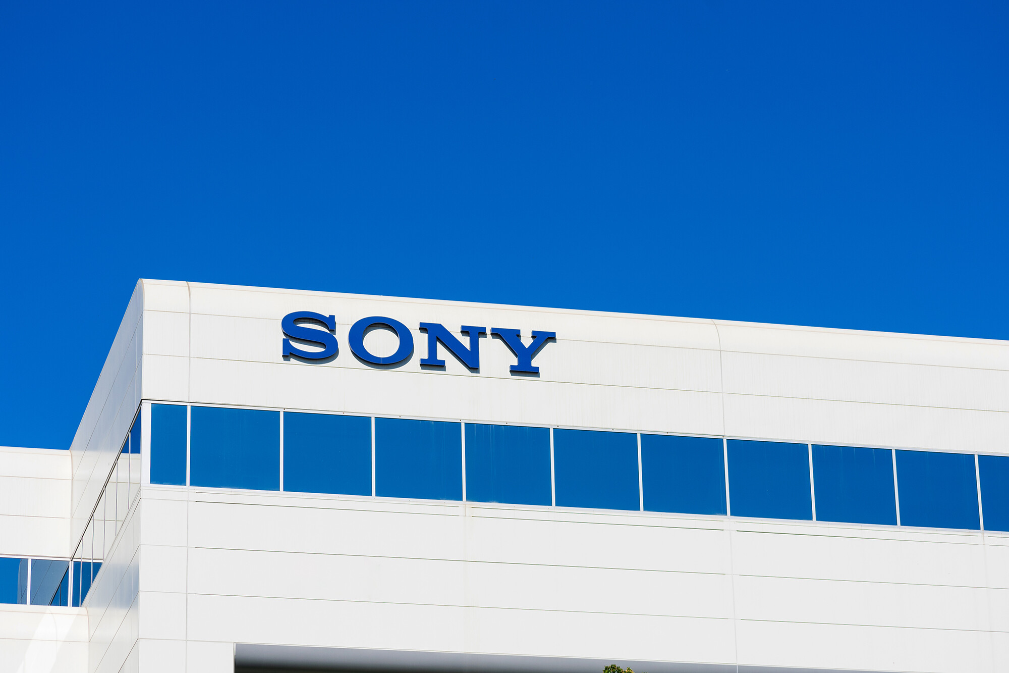 Former Sony employee sues company over alleged racist abuse