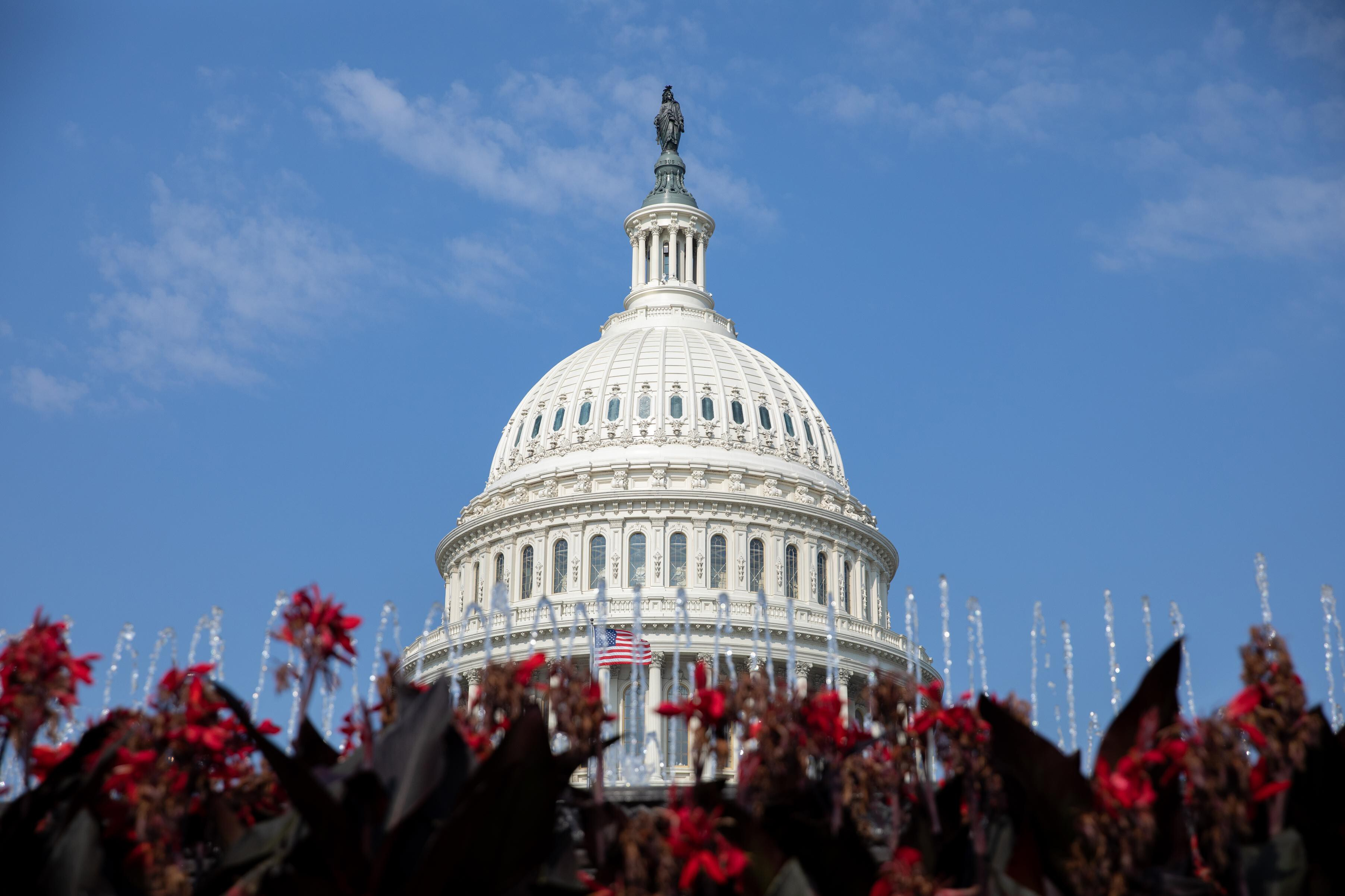 The 10 Senate seats most likely to flip