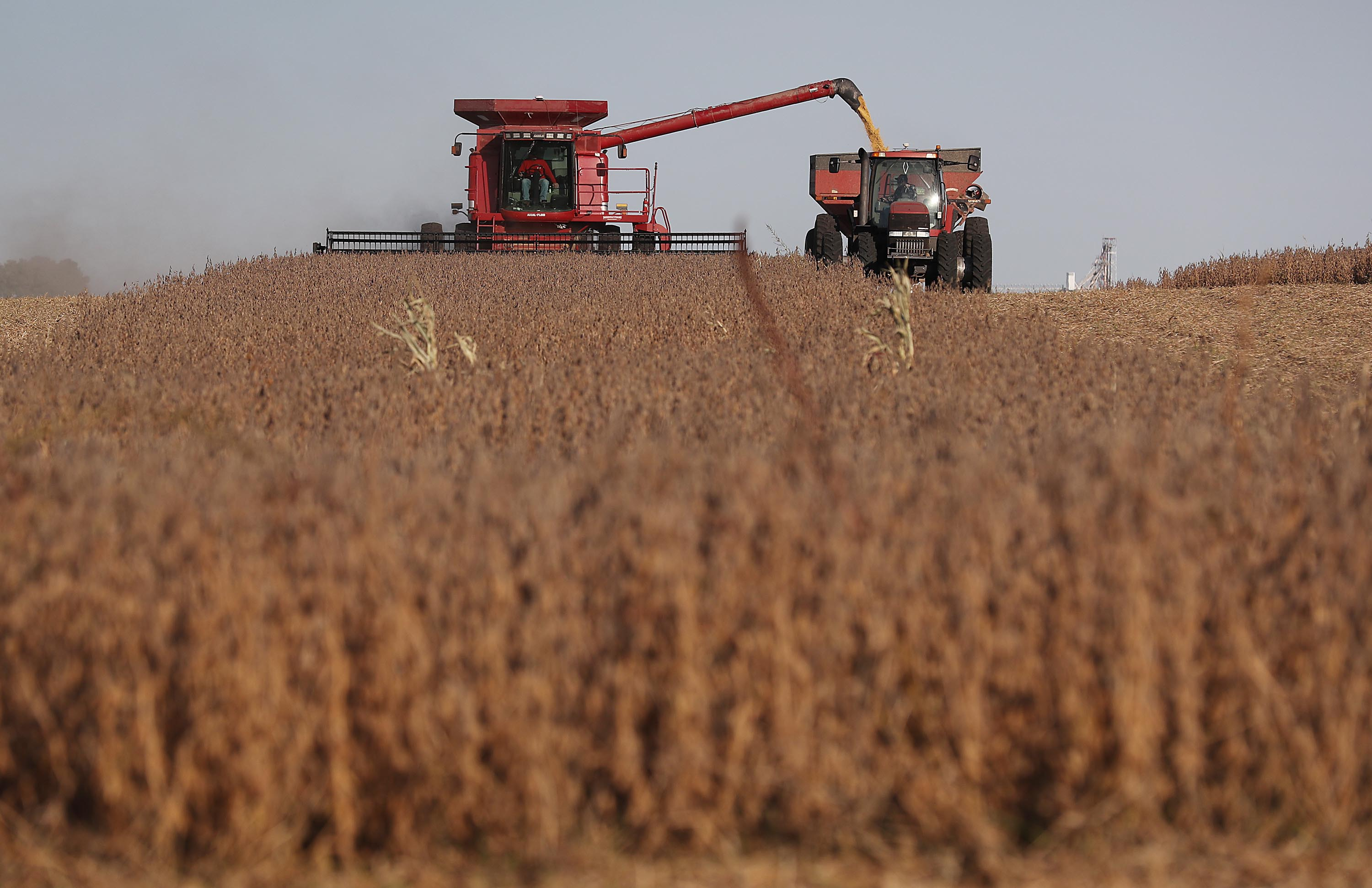 China's buying soybeans again. That could help Trump in key states