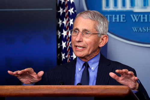 Image for Fauci says US should double its testing over next several weeks