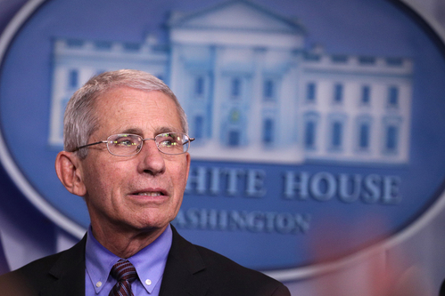 Image for Fauci says it's time to think about reopening schools