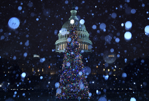 Image for Trump gives most federal workers the day off on Christmas Eve