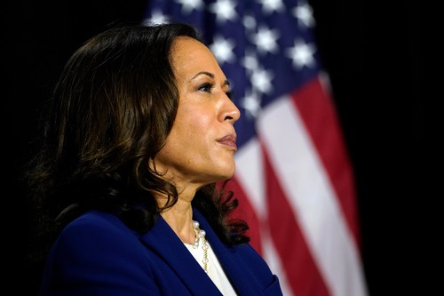 Image for Kamala Harris slams Trump's handling of coronavirus: 'He was scared'