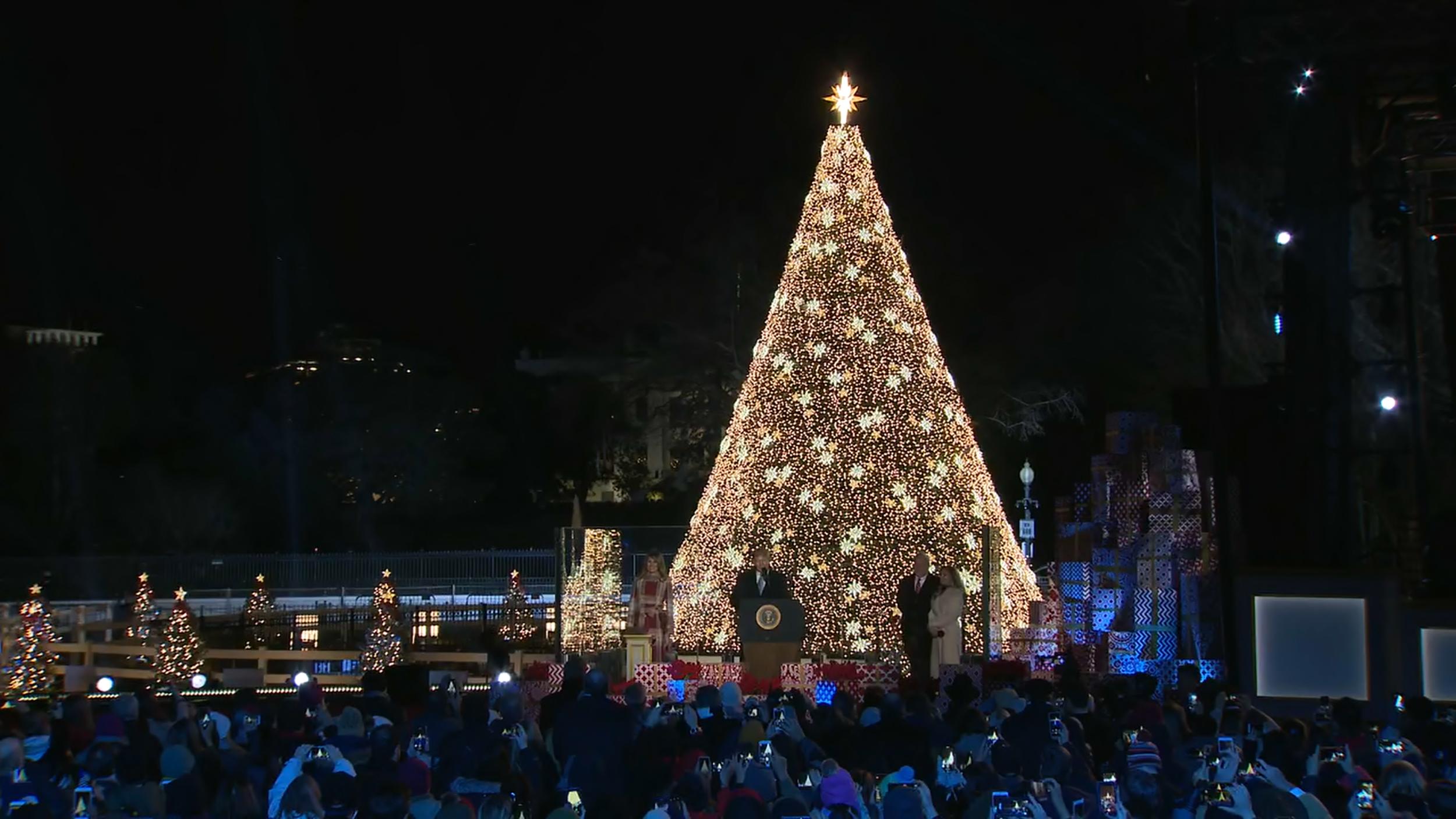 Trump lights National Christmas Tree to mark holiday season