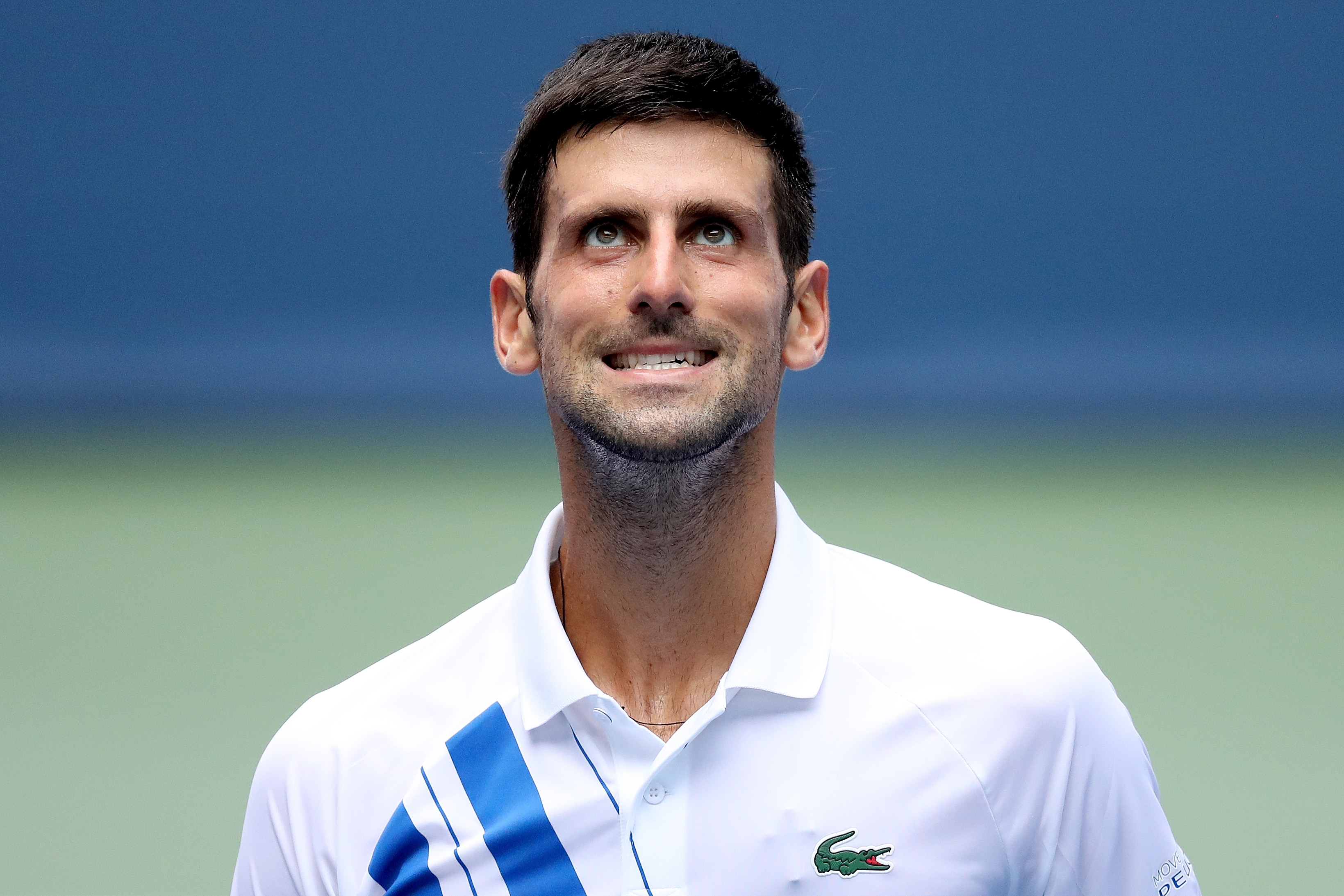 Novak Djokovic is 'in pain' after US Open incident, says former coach