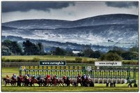 Why this ancient land is the spiritual home of Irish horse racing
