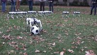 These dog-like robots do backflips and play soccer. Yes, they're adorable