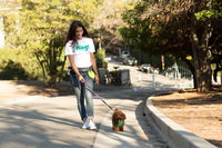 SoftBank gives up on dog-walking startup Wag after investing $300 million