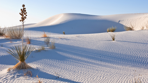 Image for White Sands National Monument designated as the newest US national park