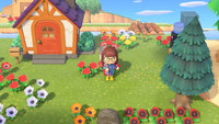 Animal Crossing is letting people live out their wildest fantasy: Normalcy