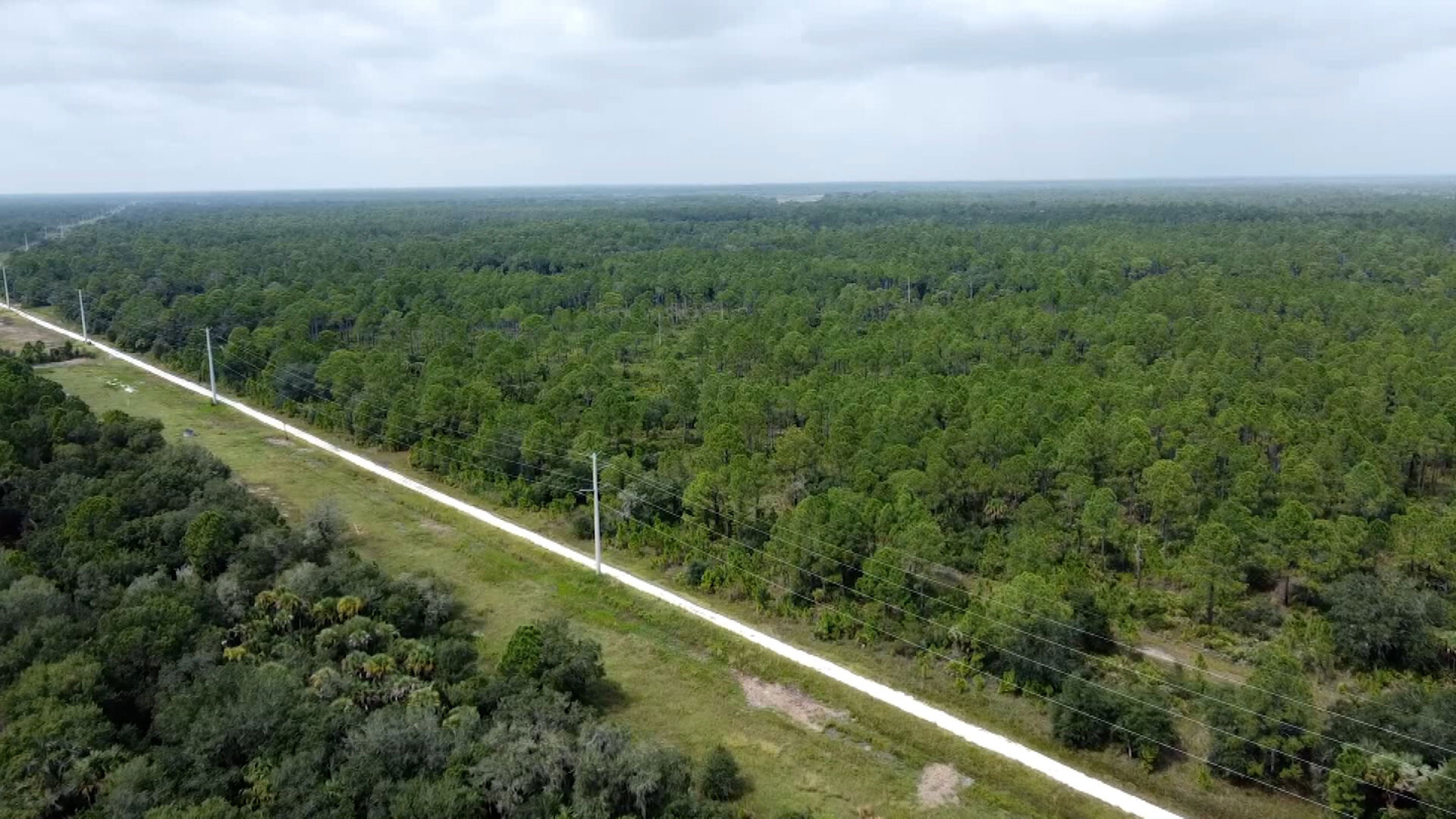 Florida nature reserve's swampy landscape made the search for Brian Laundrie treacherous
