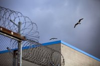 6 people injured in a prison riot in San Diego