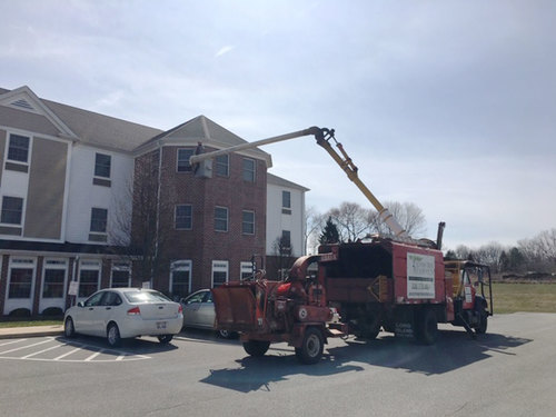 Image for A son used a bucket truck to visit his mother on the third floor of her assisted living home