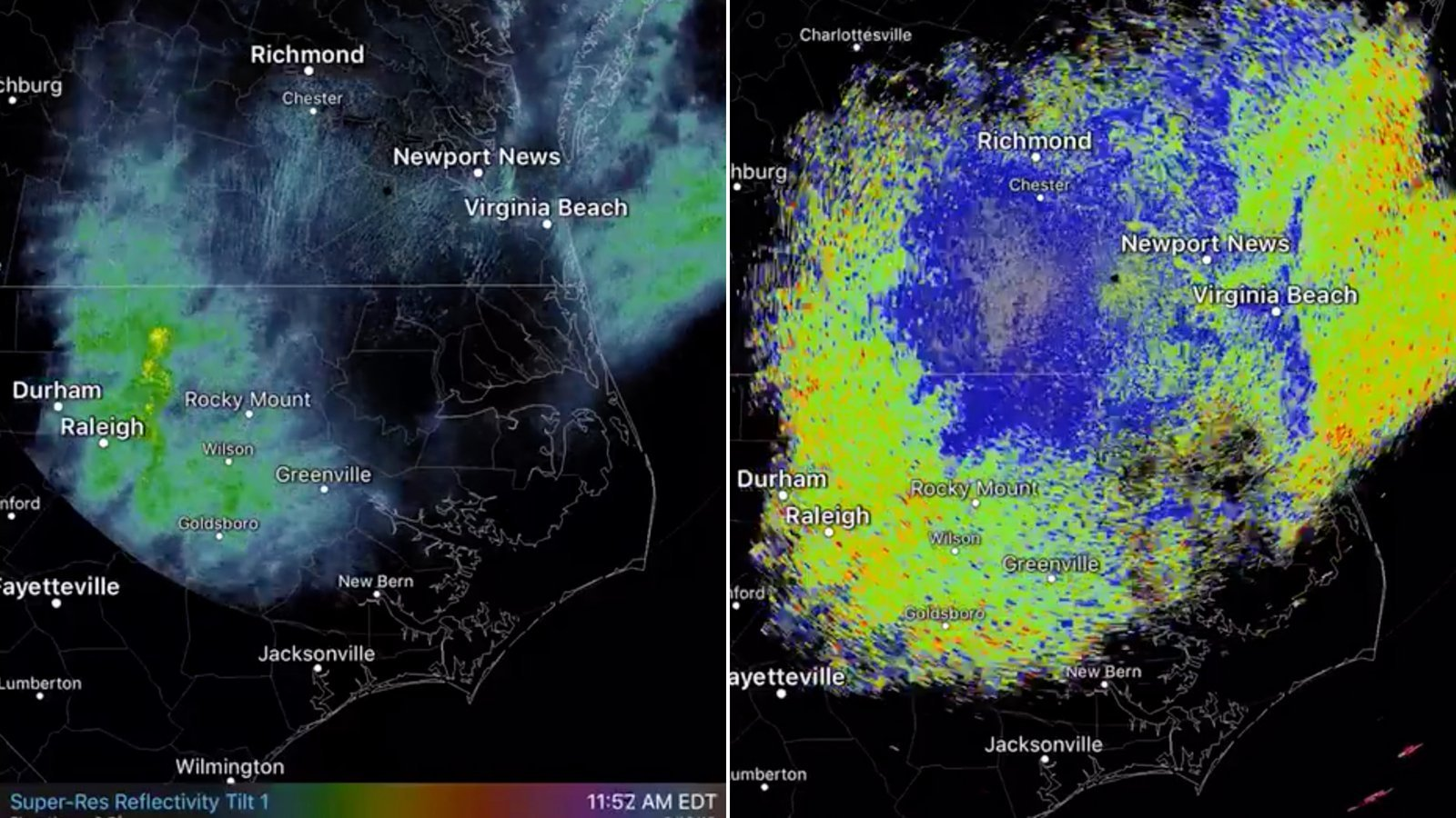 There are so many dragonflies that they're showing up on weather radar