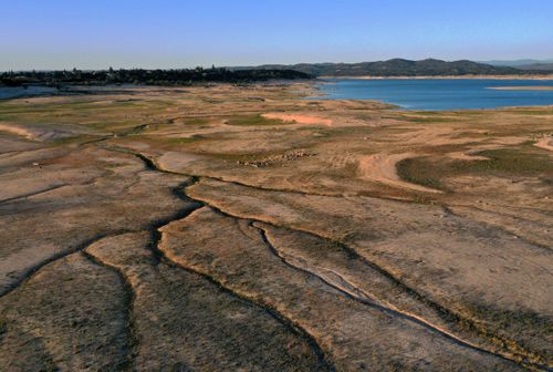 Image for Drought emergency declared in most of California amid 'acute water supply shortfalls'