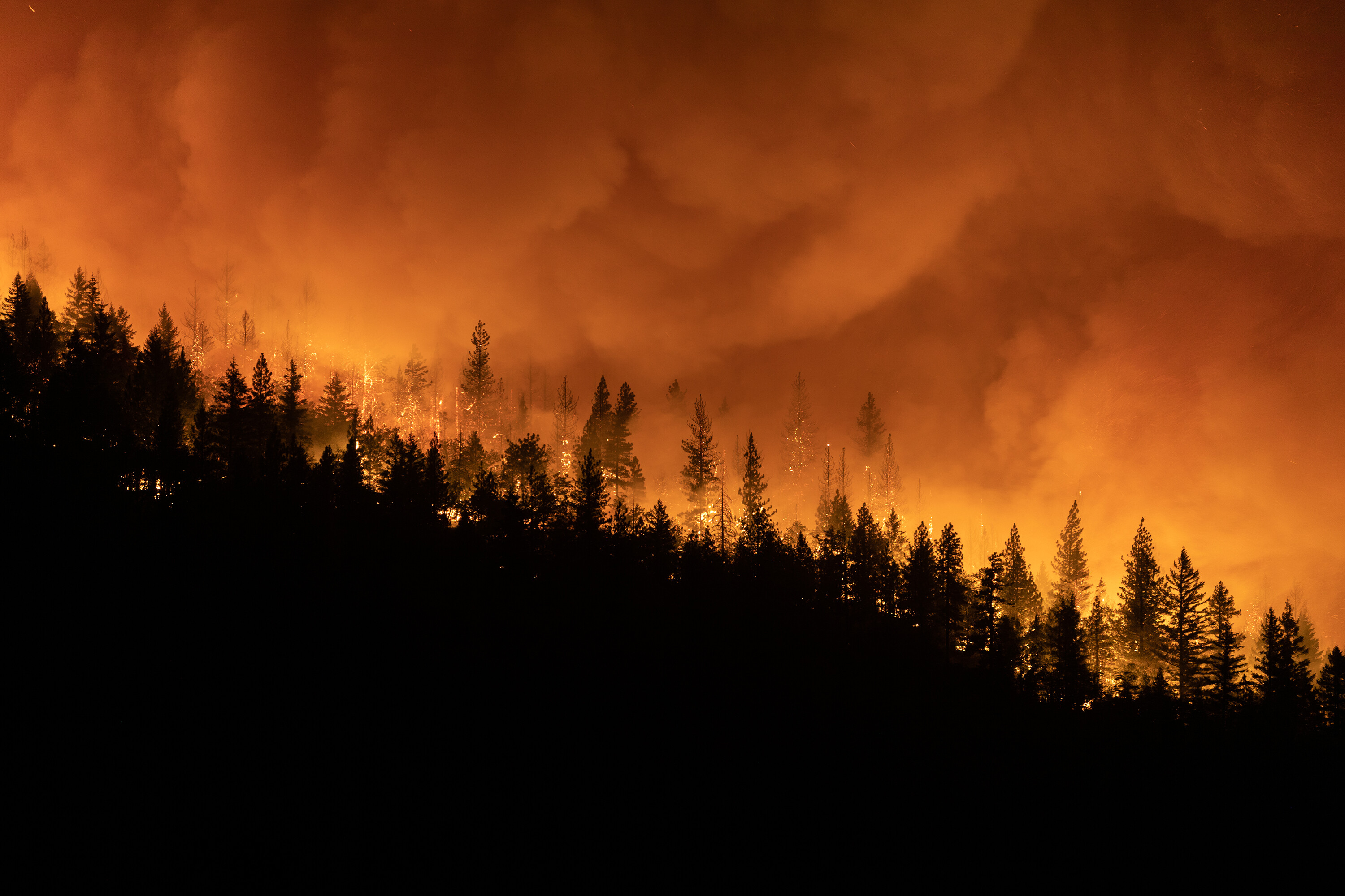 Former college instructor faces arson charges over a Northern California fire