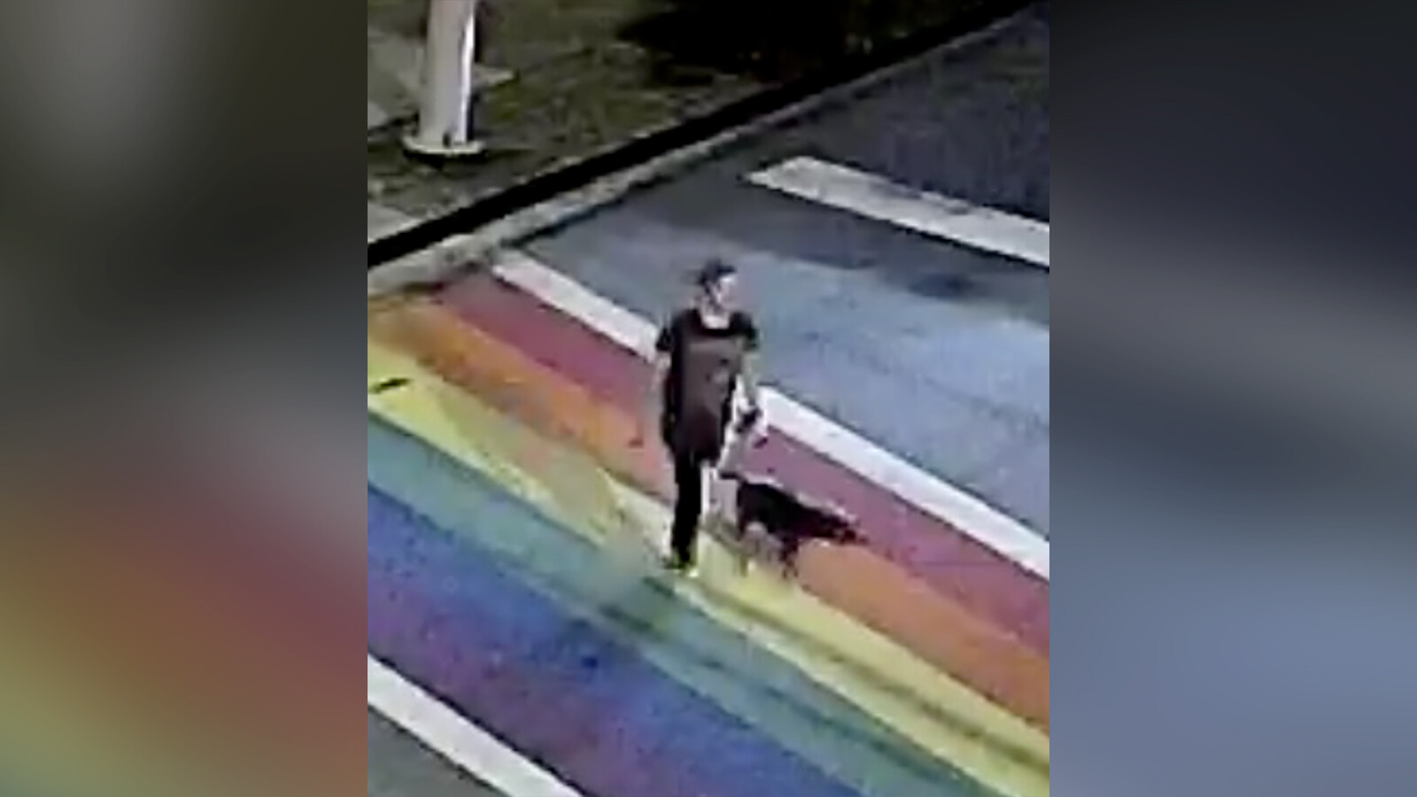 Police are investigating the killing of a woman and her dog in Atlanta's Piedmont Park