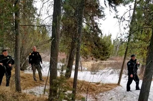 Image for Backcountry guide mauled to death while fishing near Yellowstone National Park