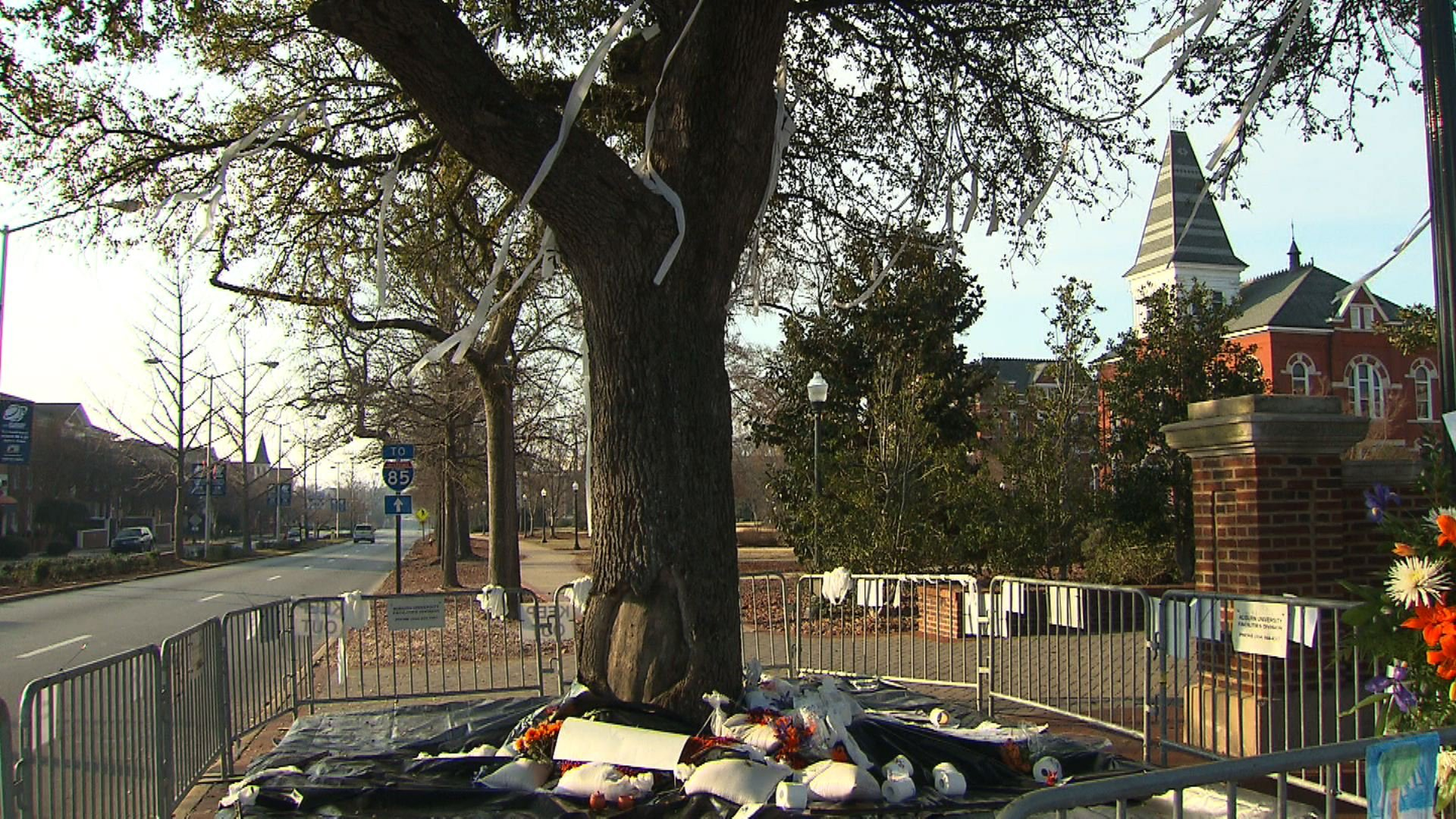 Harvey Updyke, who poisoned landmark oak trees at Auburn University, dies at 71