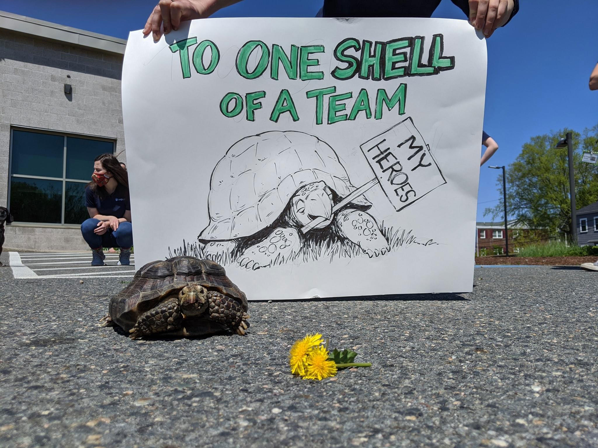 Ms. Jennifer, a 53-year-old tortoise, has found a new home after her owner died of Covid-19