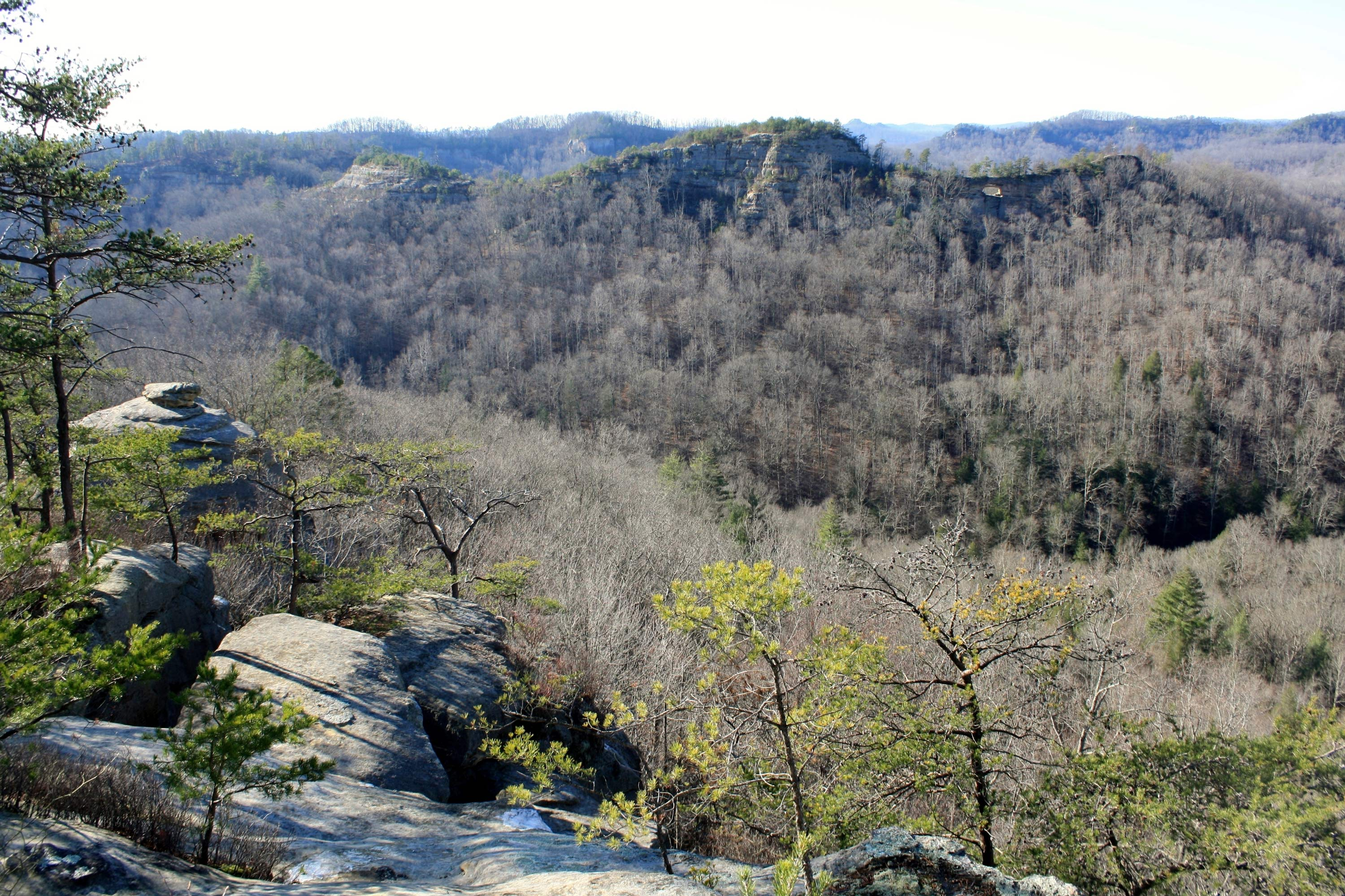 University of Kentucky student falls to her death off a cliff in Red River Gorge