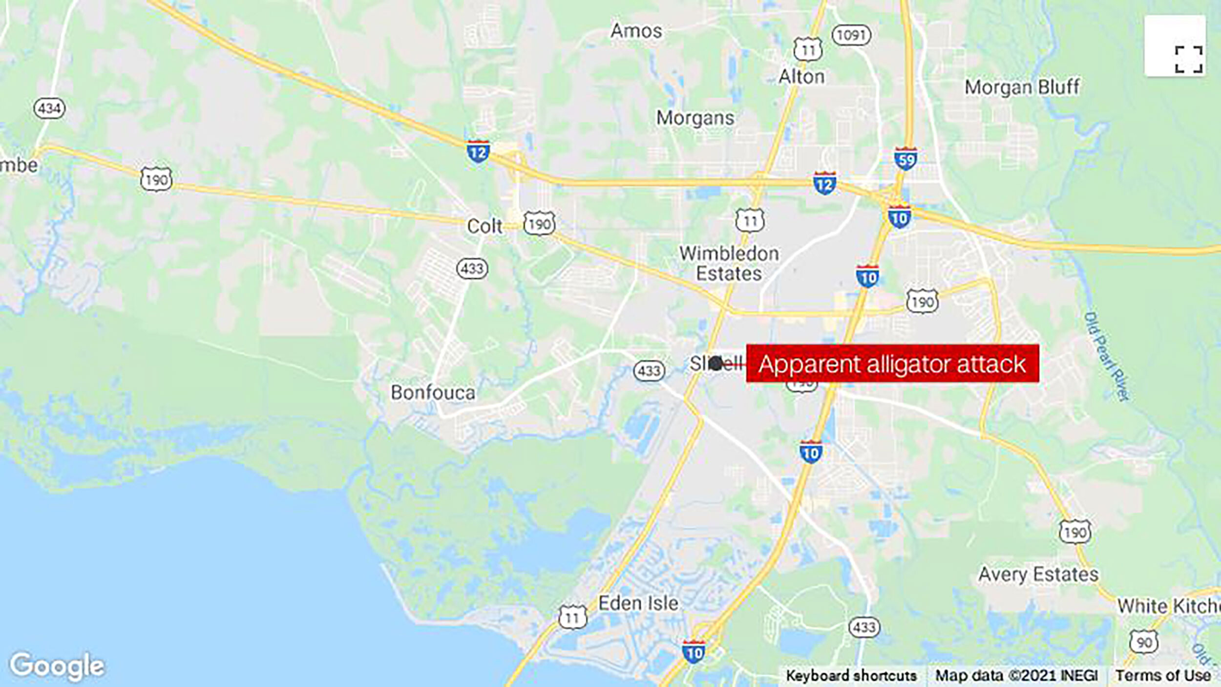 A Louisiana man is presumed dead after an alligator attacked him while he walked in floodwaters