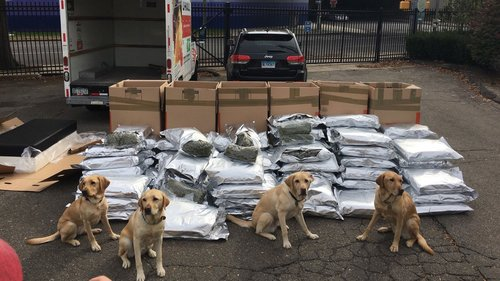 The K9 unit, after police stopped a car on Interstate 95 loaded with marijuana