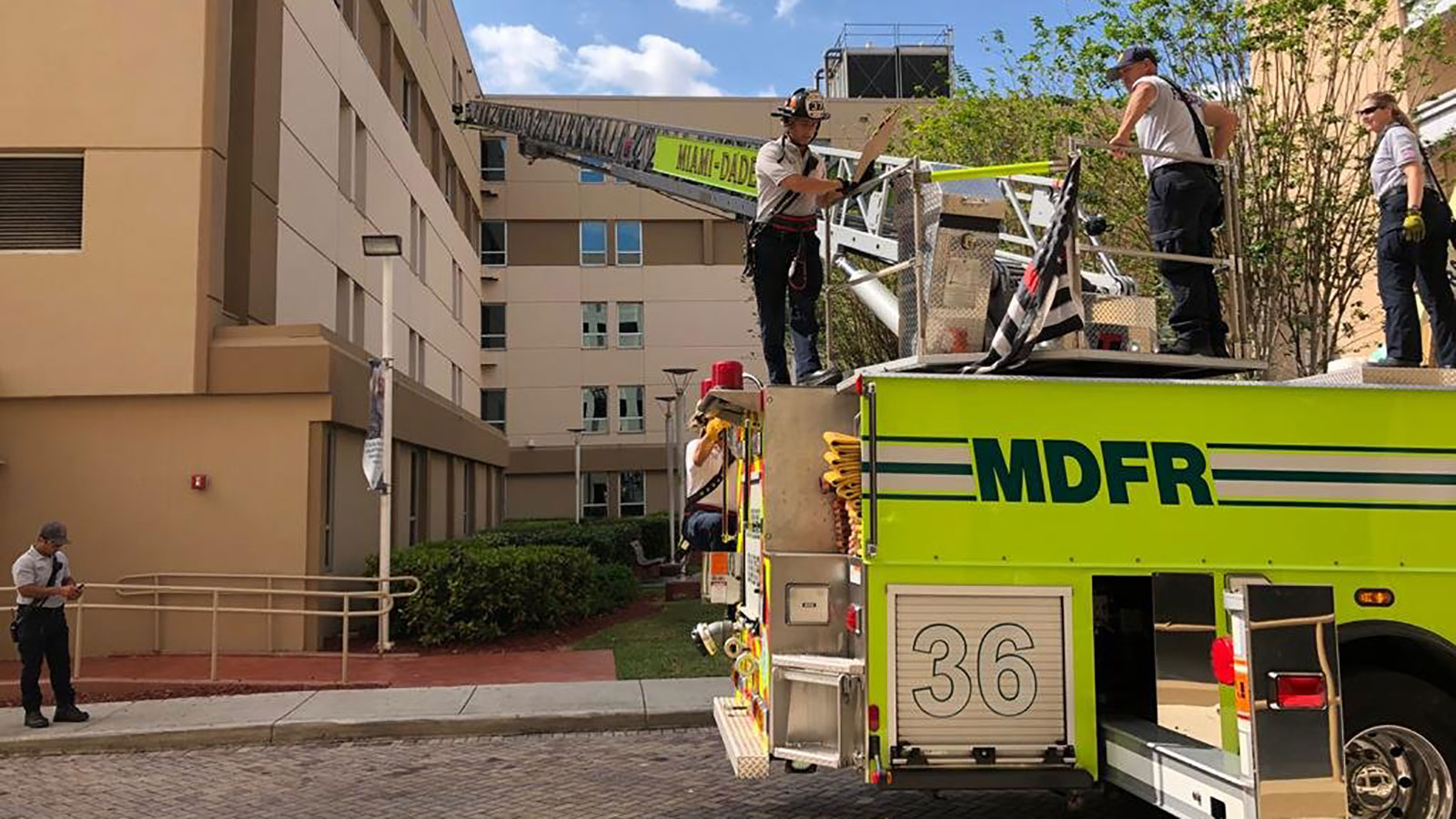 A Florida fire crew used a ladder to surprise a firefighter with coronavirus at his hospital window