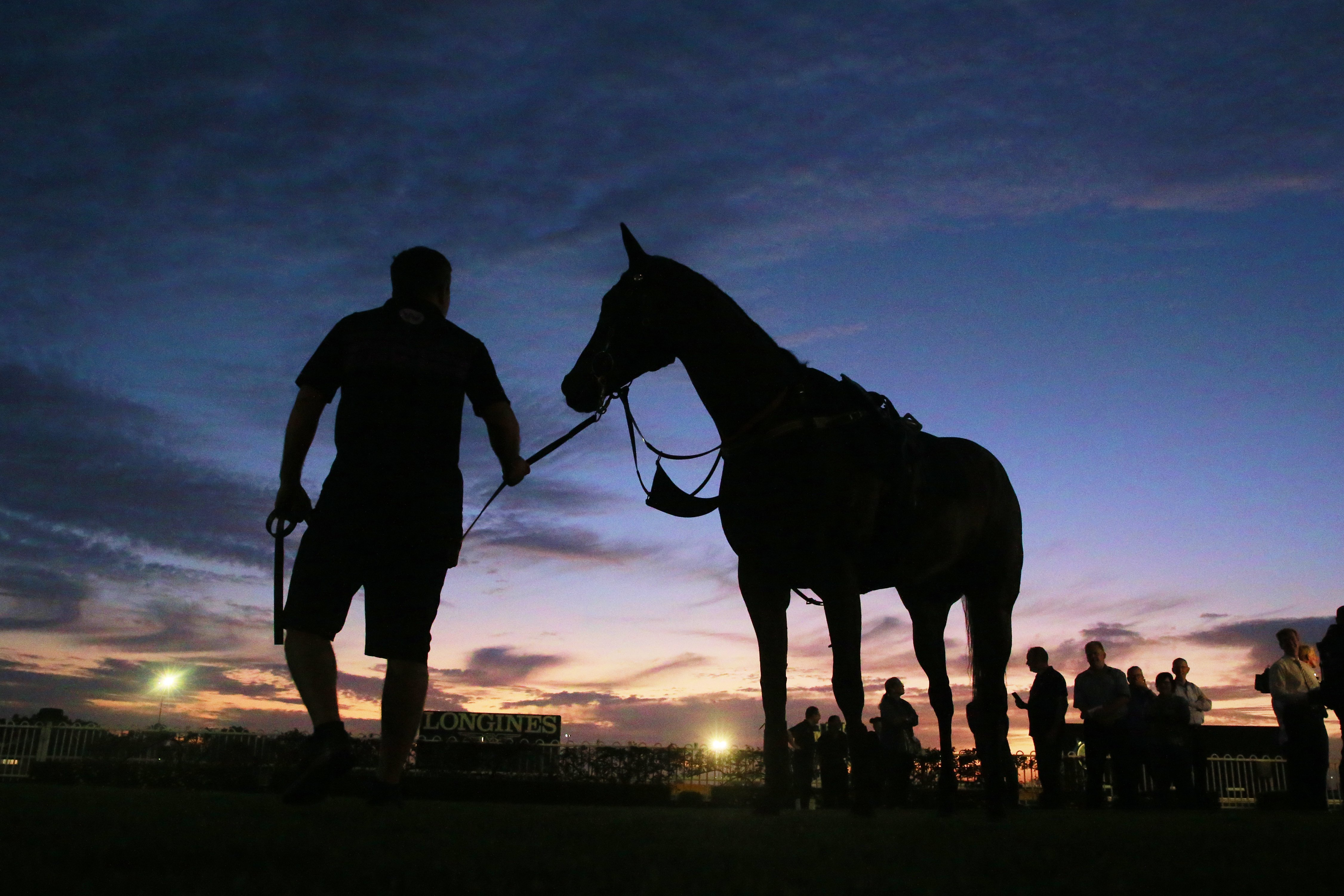 12 horses have died at New York state racetracks in July