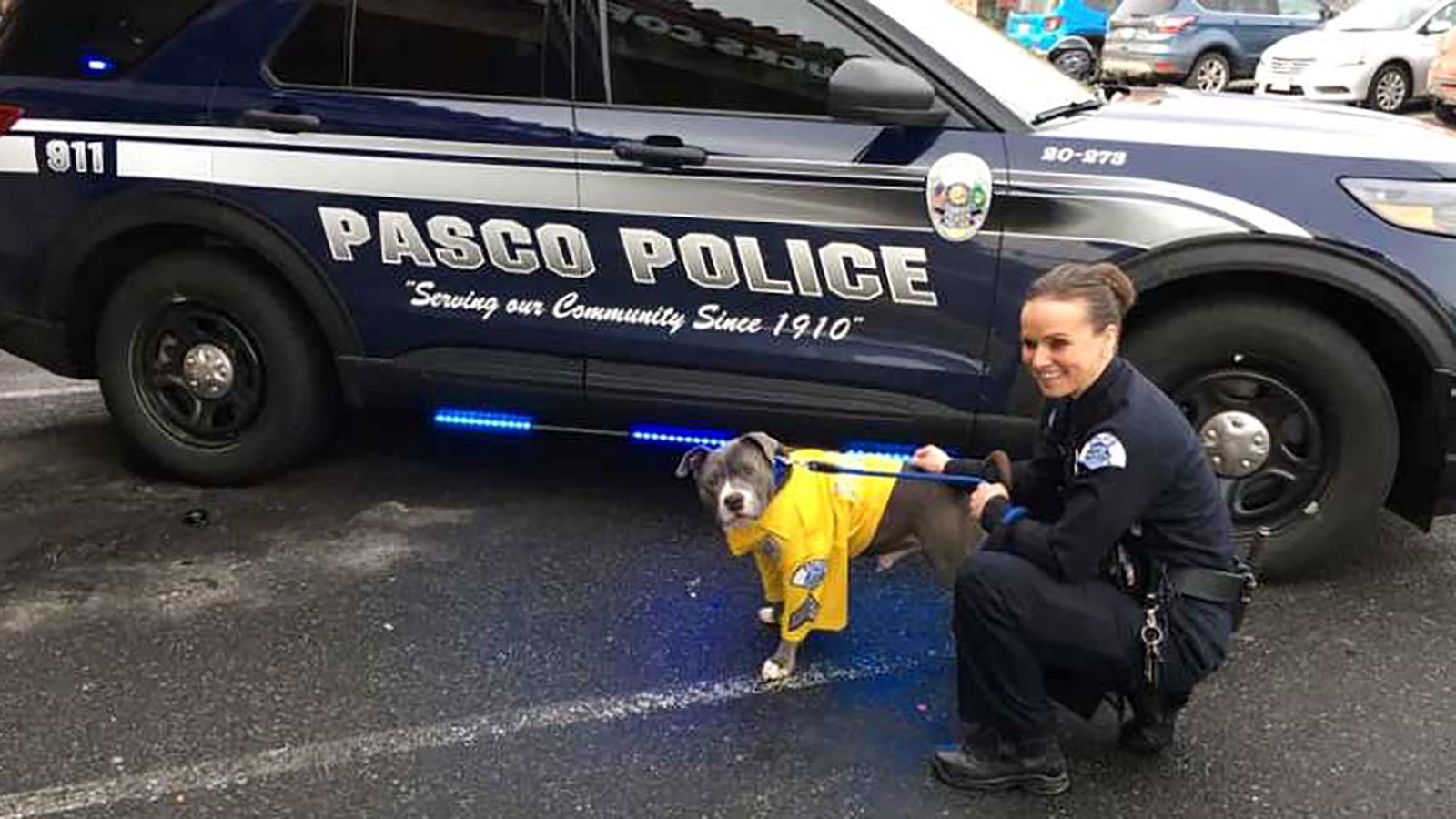 A terminally ill rescue dog became a police K-9 for a day