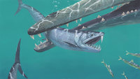 Massive saber-toothed anchovies once existed. Yes, anchovies