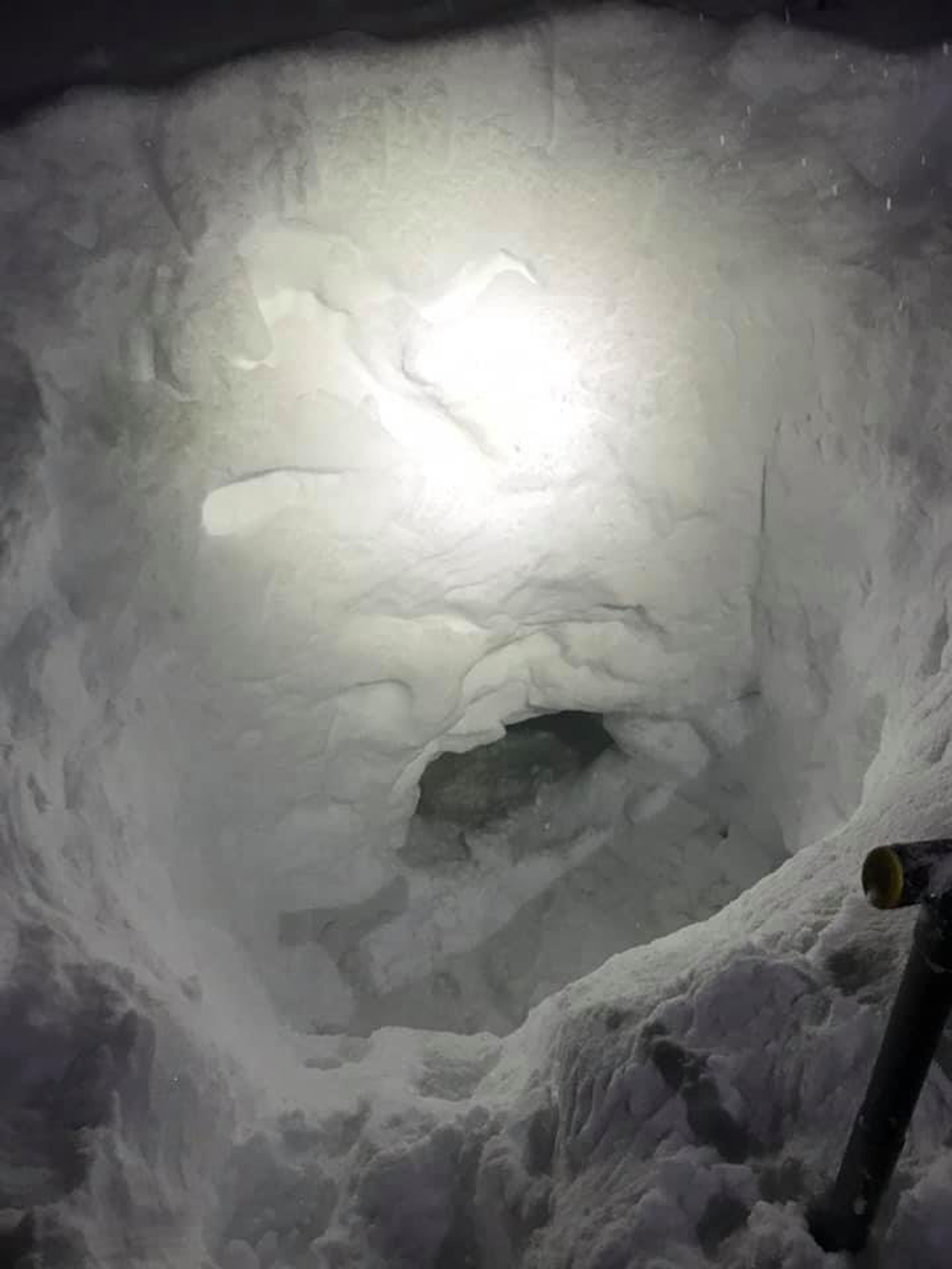 A missing teen snowmobiler built a snow cave to survive until rescuers arrived