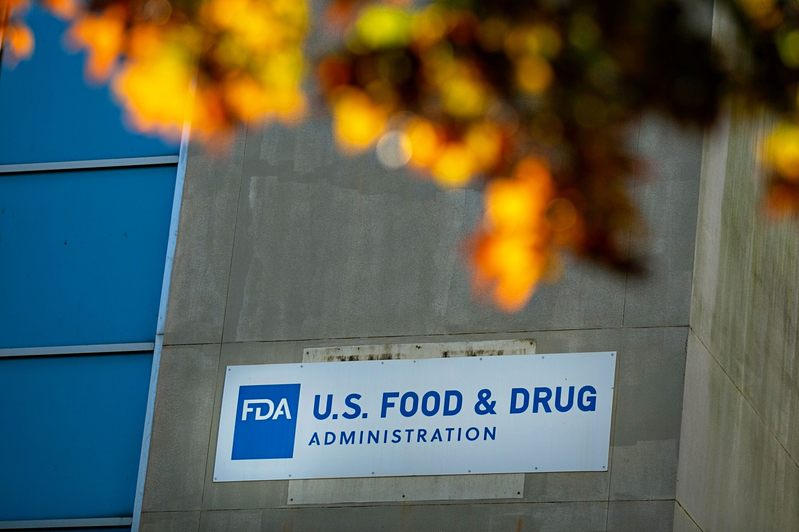 Ready-to-eat spices and food additives exposed to widespread rodent infestation were seized by the FDA