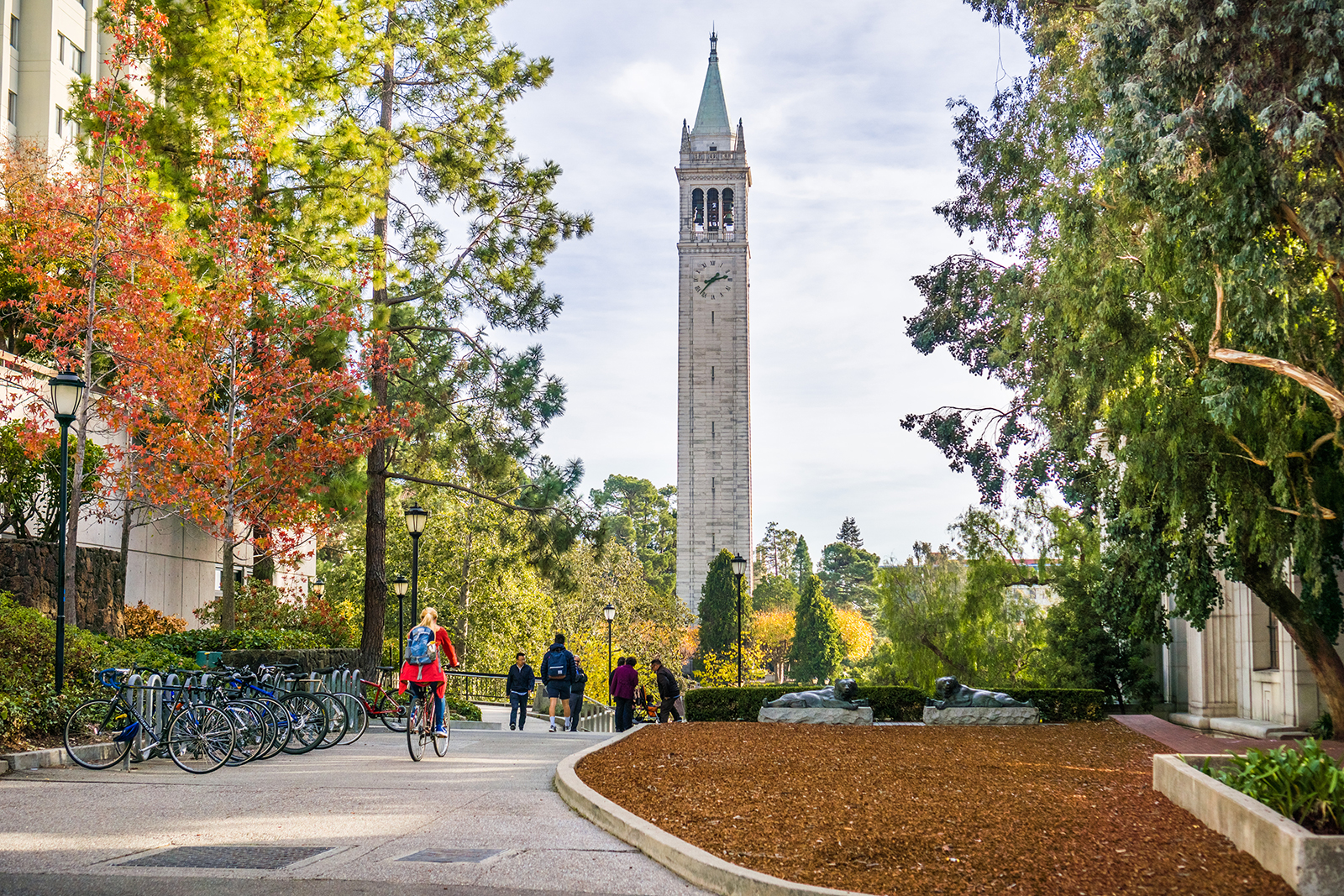 Dozens of students were inappropriately admitted to California universities, state auditor says