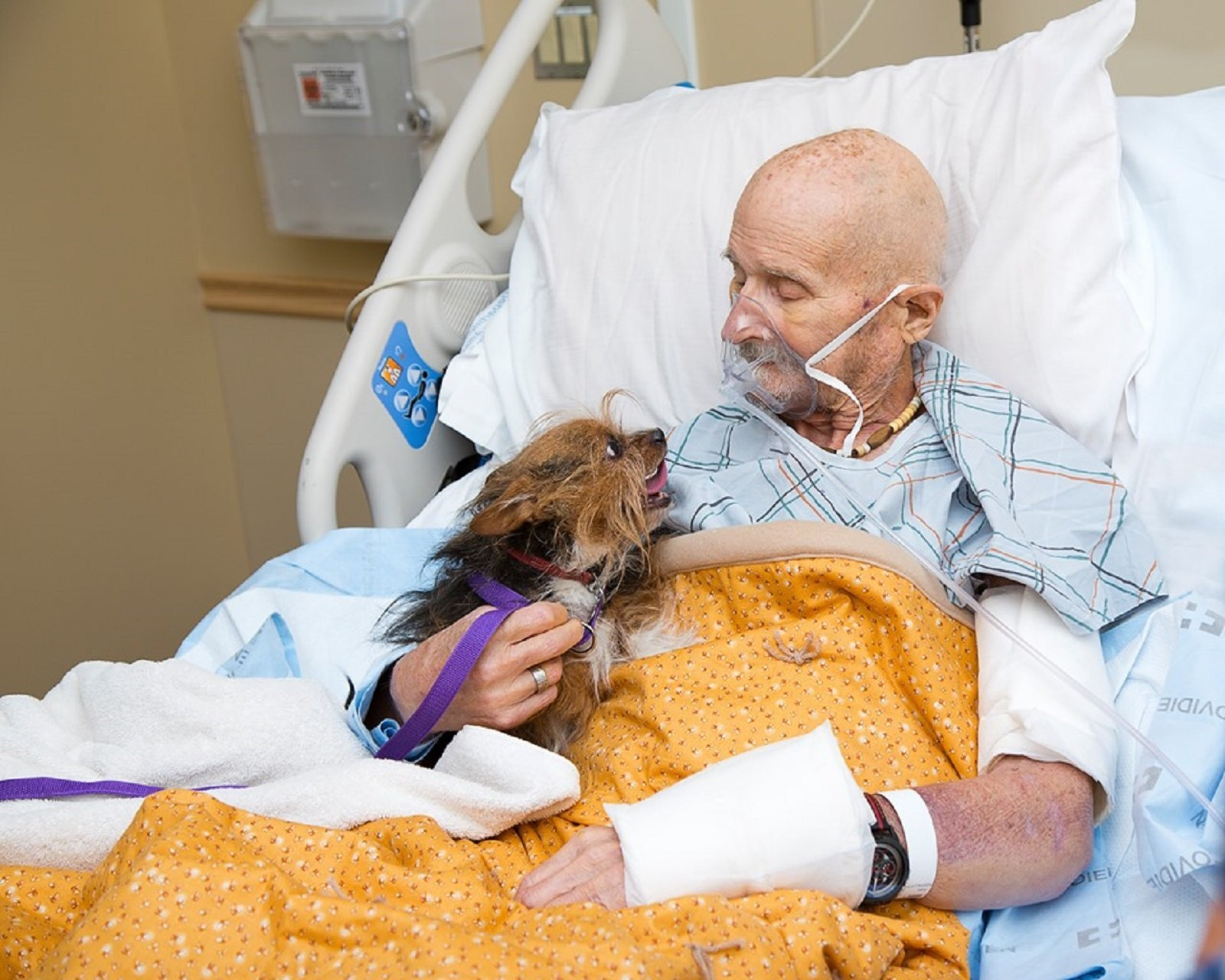 A Vietnam veteran in hospice care got to see his beloved dog for the last time