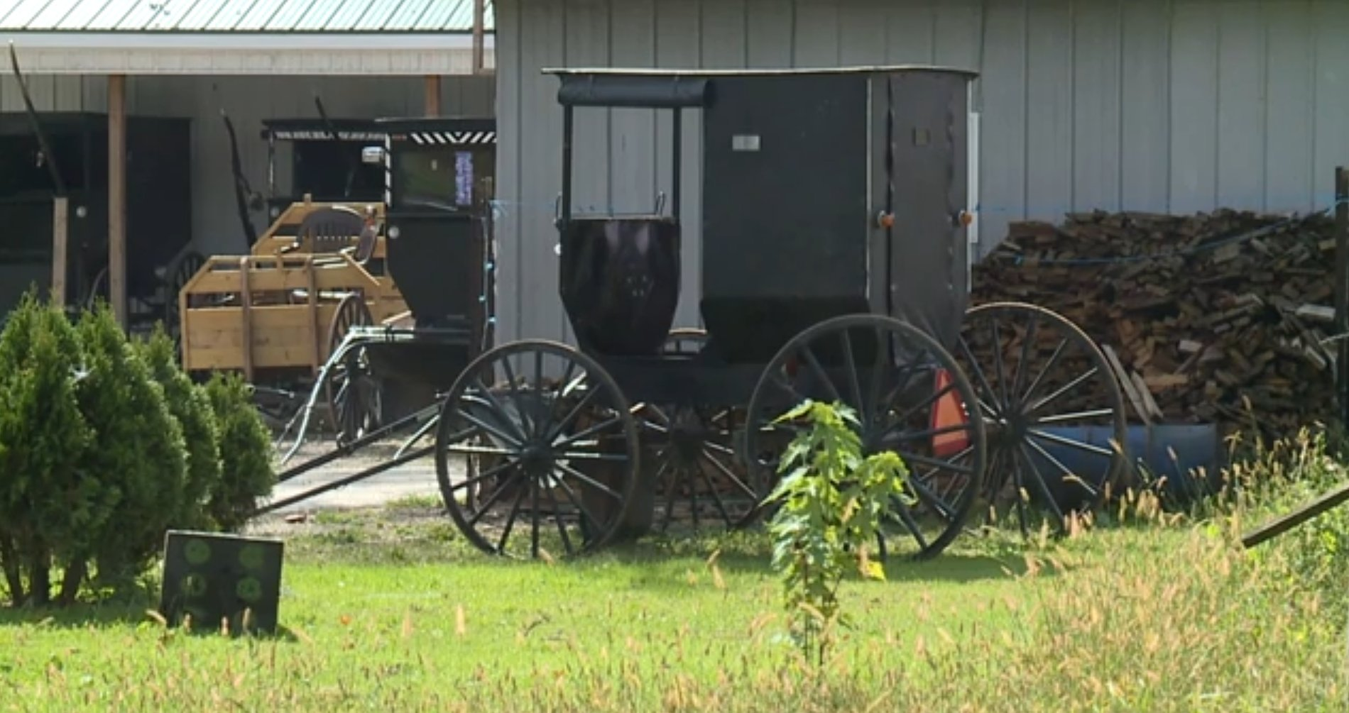 Two Amish men escape police after being pulled over for drinking and driving their horse and buggy