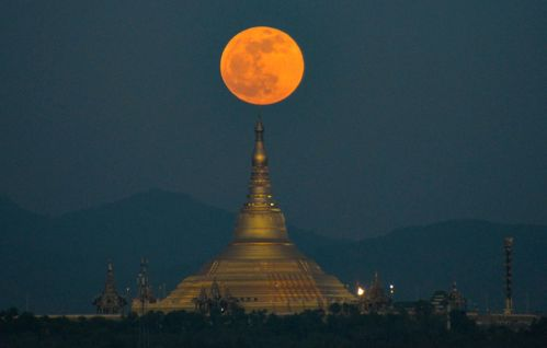 Image for See the lunar eclipse during the full beaver moon