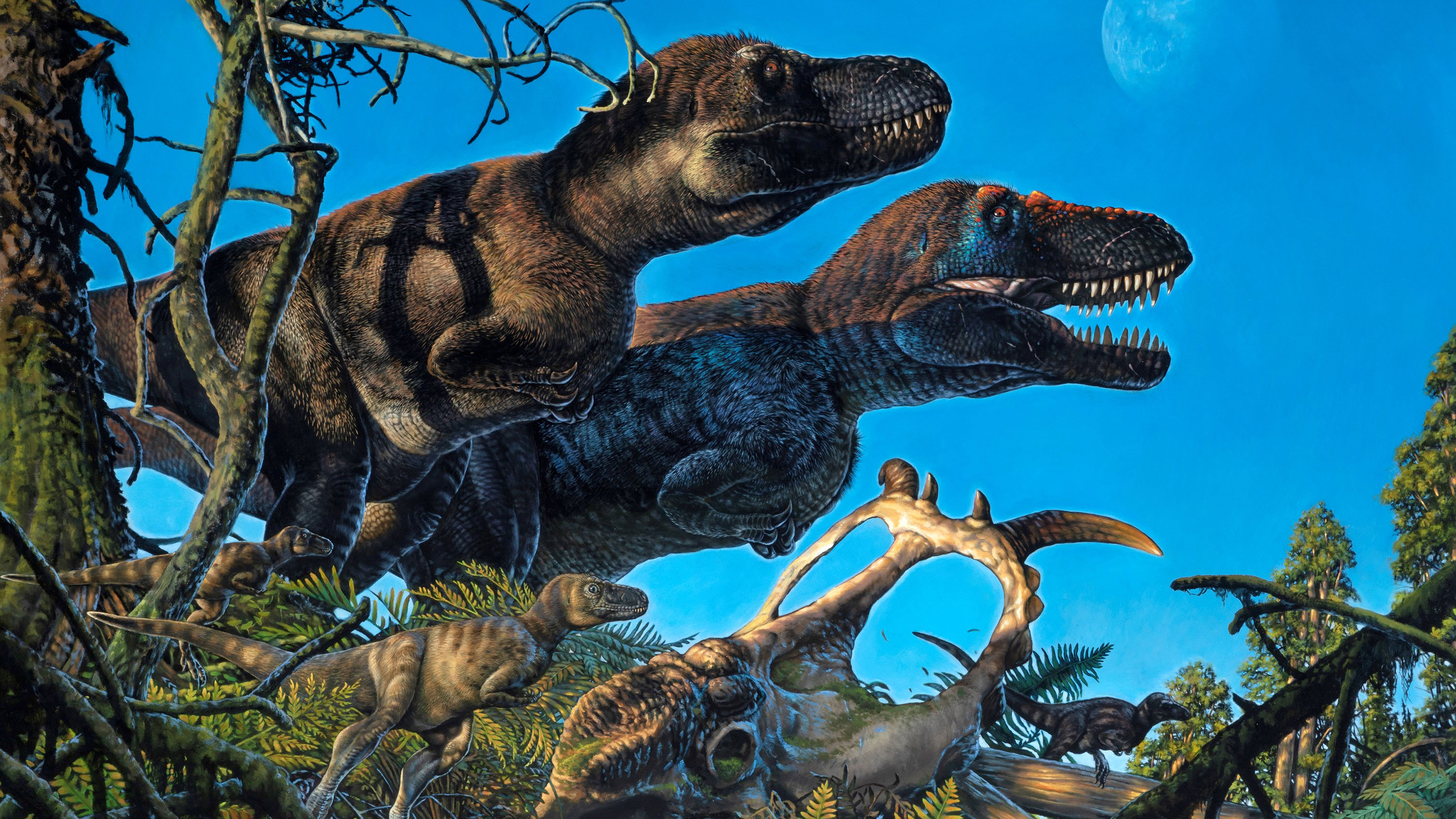 'Polar dinosaurs' may have given birth in the Arctic over 70 million years ago, study finds