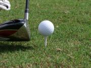 Golf, NASCAR and College Sitters do mix!