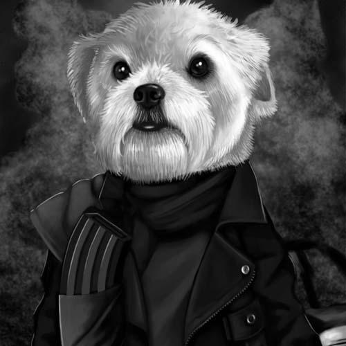 mad max dog