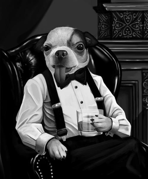 playboy dog