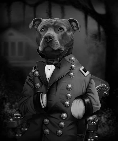 pit bull civil war