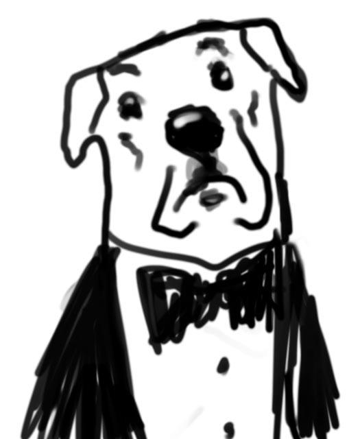dog head tuxedo