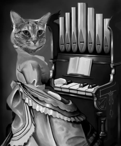 organ cat piano