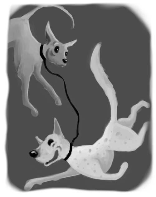 dog nunchucks