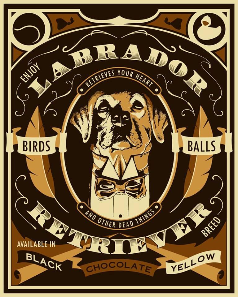 Image of Labrador Ink-jet Print