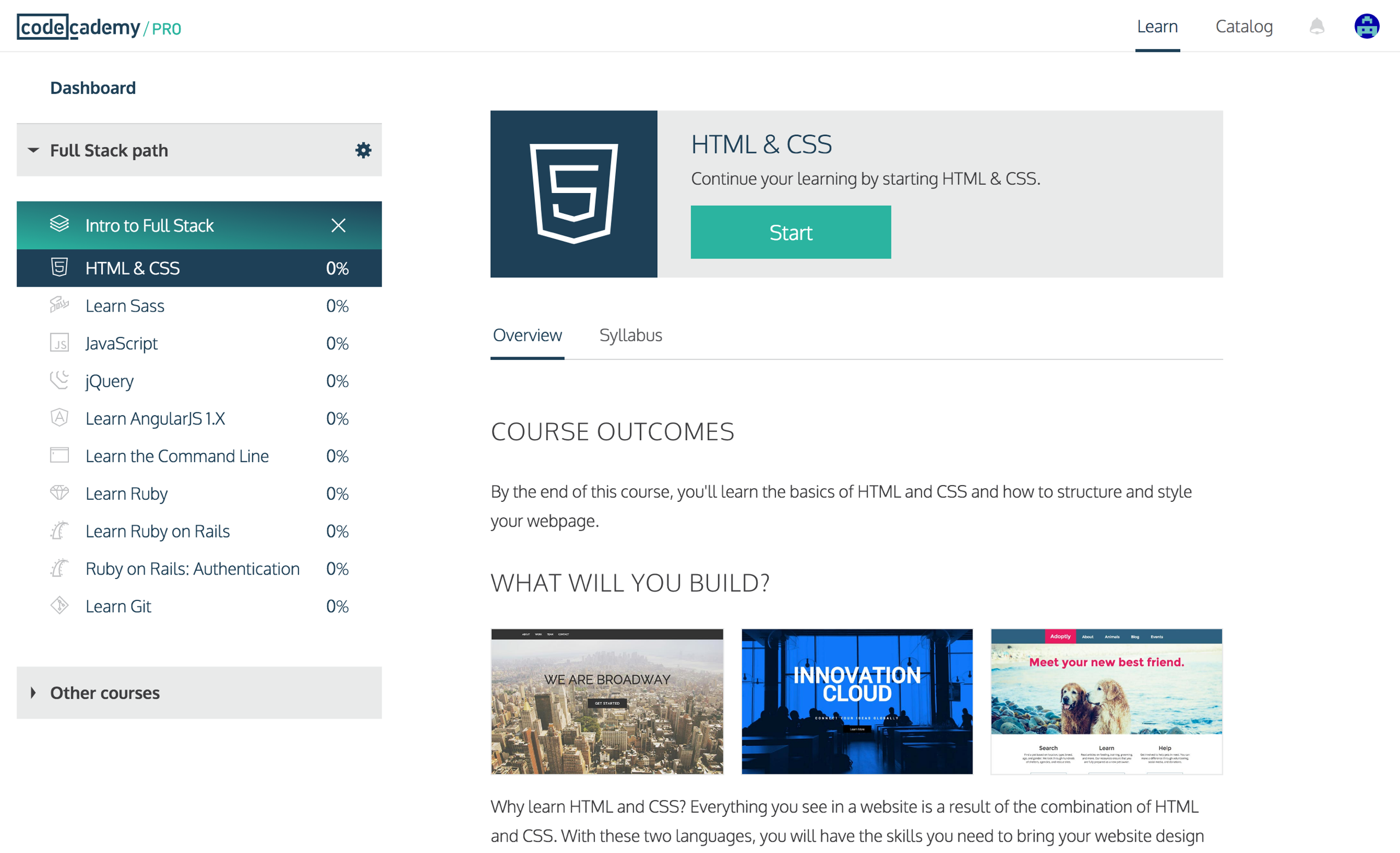 Introducing Codecademy Pro | Codecademy
